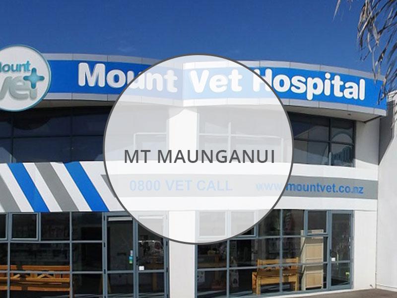 Mount Vet Hospital